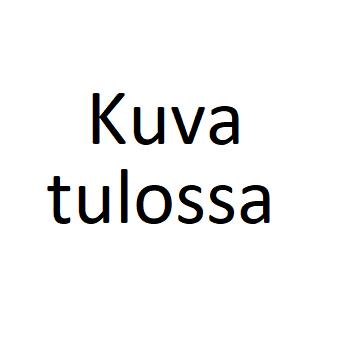 Ilona Aalto